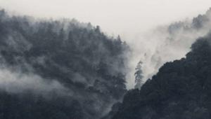 Chan feeling mountain